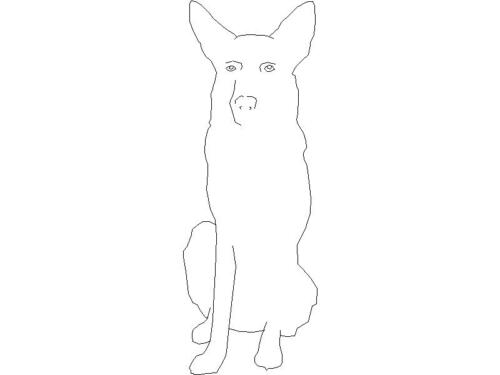 Perro 16